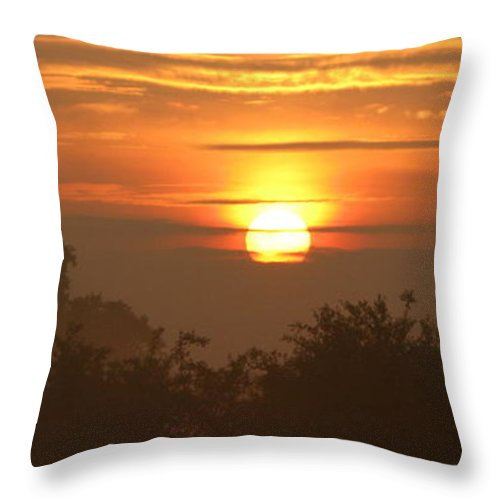 Sun Throw Pillow featuring the photograph Gold by Maria Joy