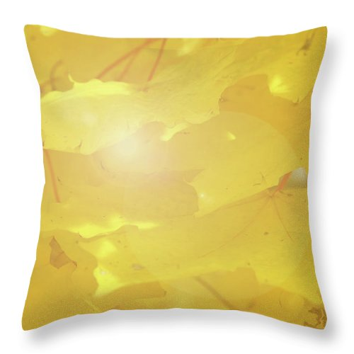Maple Throw Pillow featuring the photograph Golden Autumn Leaves by Marie Leslie