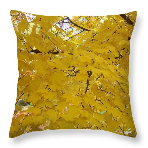 Fall Autum Trees Maple Yellow Throw Pillow featuring the photograph Golden Canopy by Karin Dawn Kelshall- Best