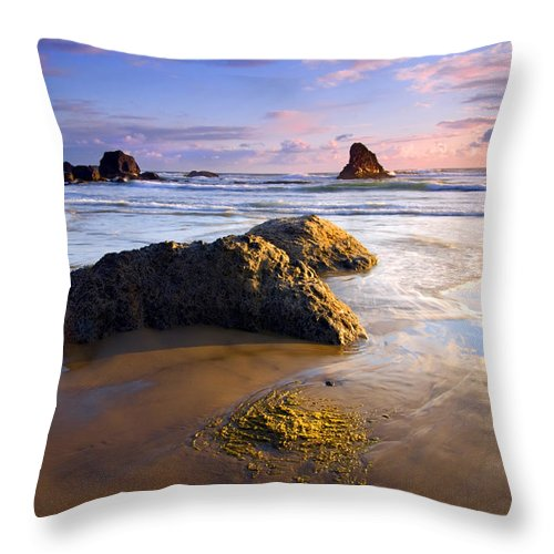 Beach Throw Pillow featuring the photograph Golden Coast by Mike Dawson
