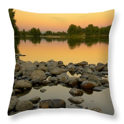 Gold Throw Pillow featuring the photograph Golden Contemplation by Idaho Scenic Images Linda Lantzy