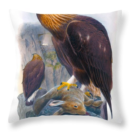 Golden Eagle Throw Pillow featuring the painting Golden Eagle Antique Print John Gould Birds Of Great Britain by Orchard Arts