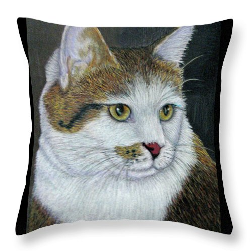 Fuqua - Artwork Throw Pillow featuring the drawing Golden Eyes by Beverly Fuqua