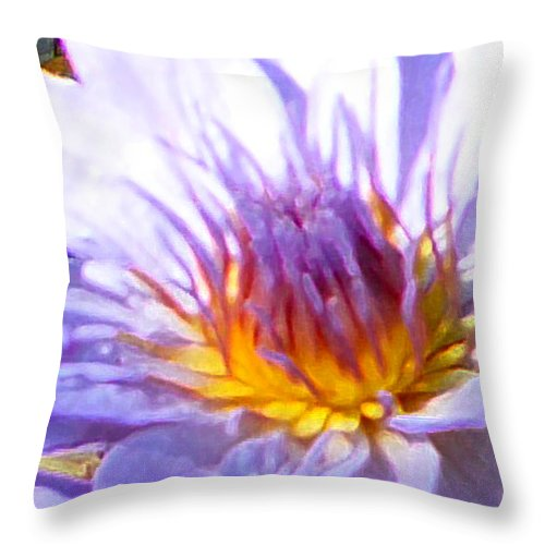 Water Lily Throw Pillow featuring the photograph Golden Heart by John Lautermilch