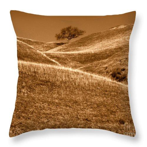 Artoffoxvox Throw Pillow featuring the photograph Golden Hills Of California Photograph by Kristen Fox