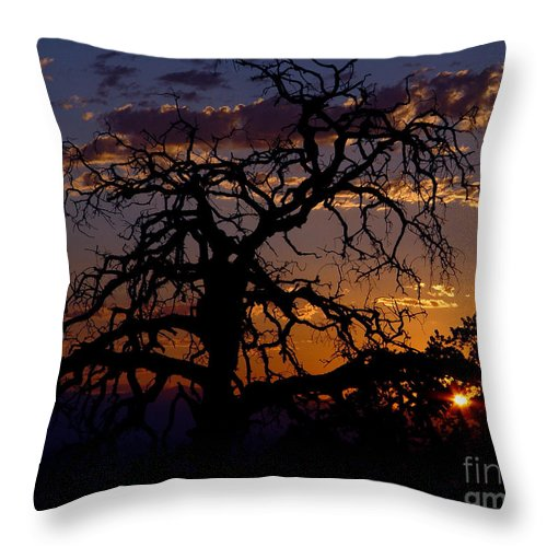 Sunset Throw Pillow featuring the photograph Golden Hour by Peter Piatt