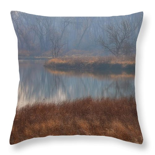 Reflections Throw Pillow featuring the photograph Golden In The Morning by Elizabeth Winter