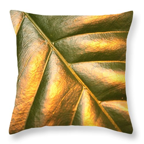 Gold Throw Pillow featuring the photograph Golden Leaf by Carol Groenen