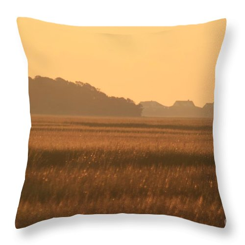 Marsh Throw Pillow featuring the photograph Golden Marshes by Nadine Rippelmeyer