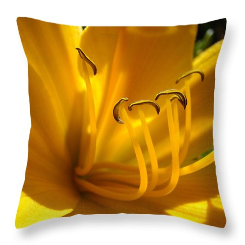 Lilies Throw Pillow featuring the photograph Golden Orange Lily Art Print Lilies Flowers Baslee Troutman by Baslee Troutman