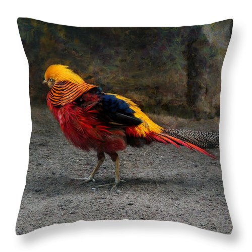 Golden Pheasant Throw Pillow featuring the photograph Golden Pheasant by Sergey Lukashin
