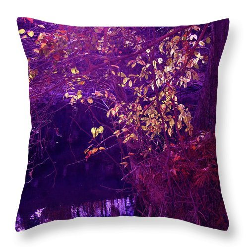 Gold Throw Pillow featuring the photograph Golden Purples by Nina Fosdick