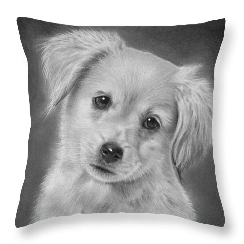 golden retriever puppy drawing throw pillow for sale by john harding