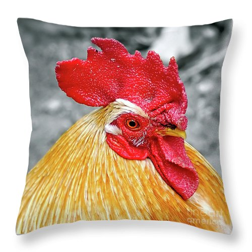 Photography Throw Pillow featuring the photograph Golden Rooster Portrait by Kaye Menner