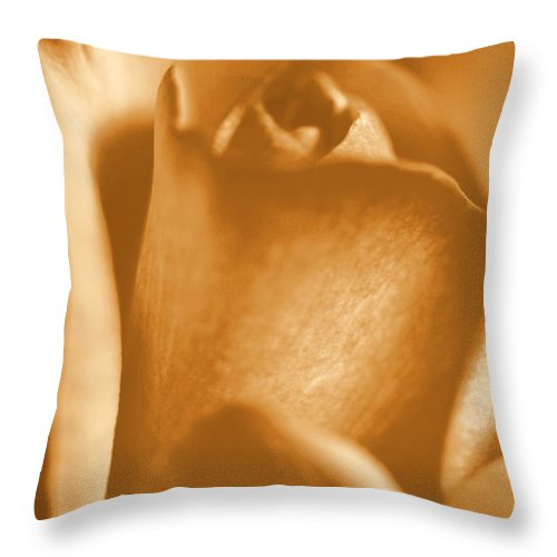 Rose Throw Pillow featuring the photograph Golden Rose Bud by Amy Fose