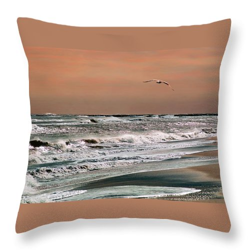 Seascape Throw Pillow featuring the photograph Golden Shore by Steve Karol