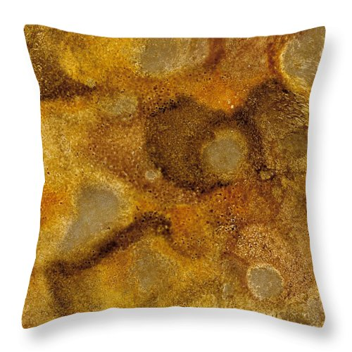 Alcohol Ink Throw Pillow featuring the ceramic art Golden by Stacie Dowdy
