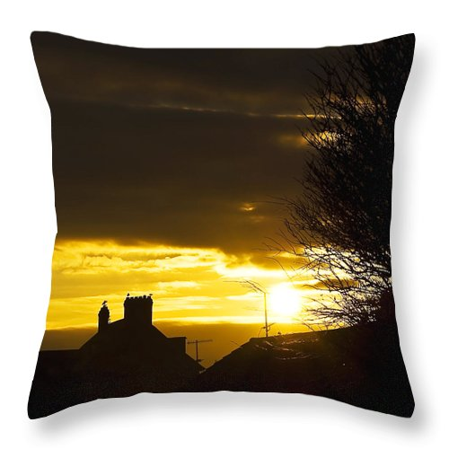 Background Throw Pillow featuring the photograph Golden Sunrise by Svetlana Sewell