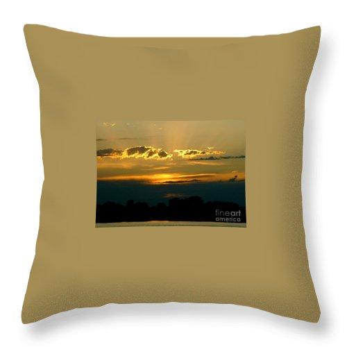 Landscape Throw Pillow featuring the photograph Golden Sunset by D Nigon