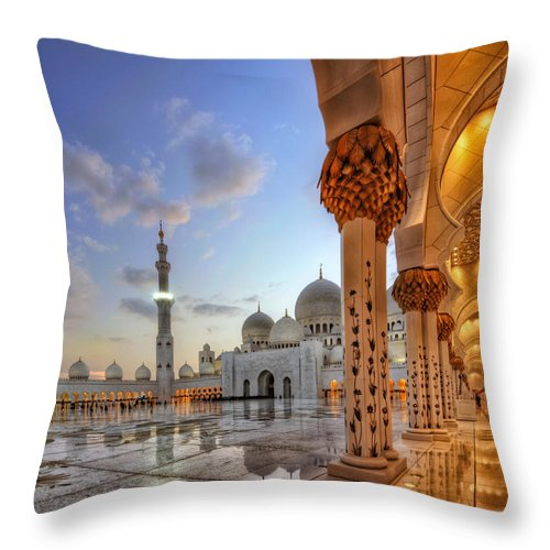 Abstract Throw Pillow featuring the photograph Golden Temple by John Swartz