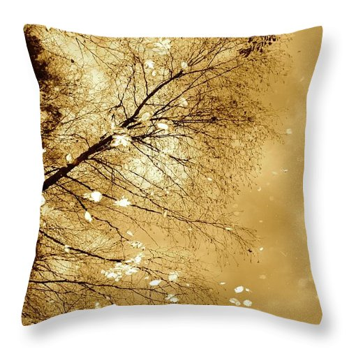 Autumn Throw Pillow featuring the photograph Golden Tones by Corinne Rhode