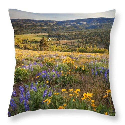 Wildflowers Throw Pillow featuring the photograph Golden Valley by Mike Dawson