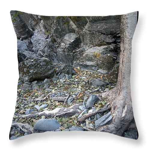 Trees Throw Pillow featuring the photograph Gollum's Cave by Karen W Meyer