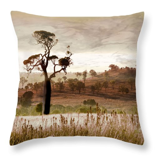 Landscapes Throw Pillow featuring the photograph Gondwana Boab by Holly Kempe