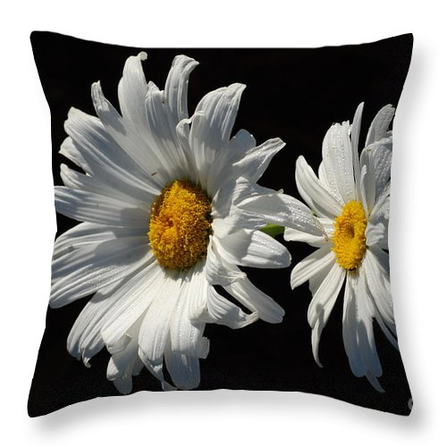 Macro Throw Pillow featuring the photograph Good Morning by Catherine Lau