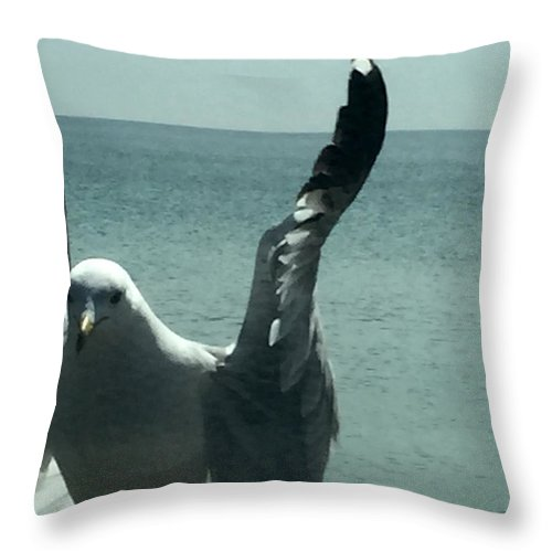 Birds At Ocean Throw Pillow featuring the photograph Good Morning Glory by Sarah Brody