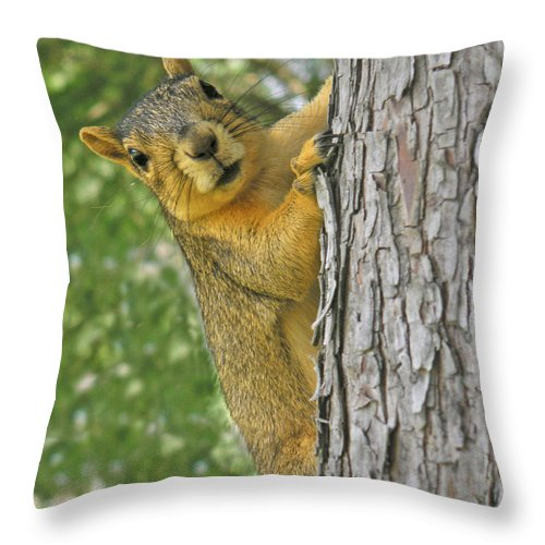 Nature Throw Pillow featuring the photograph Good Morning by Lucyna A M Green