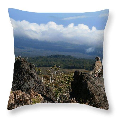 Aloha Throw Pillow featuring the photograph Good Morning Maui by Sharon Mau