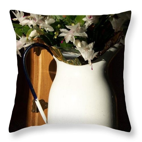 Flowers Throw Pillow featuring the photograph Good Morning Sunshine - Photograph by Jackie Mueller-Jones