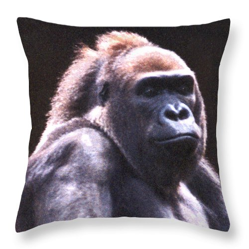 Gorilla Throw Pillow featuring the photograph Gorilla by Steve Karol