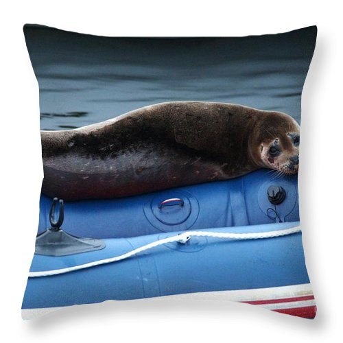Harbor Seal Throw Pillow featuring the photograph Got Salmon by Sharon Talson