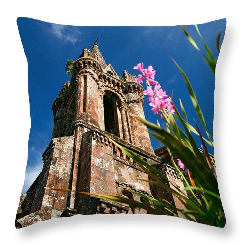 Architecture Throw Pillow featuring the photograph Gothic Chapel by Gaspar Avila
