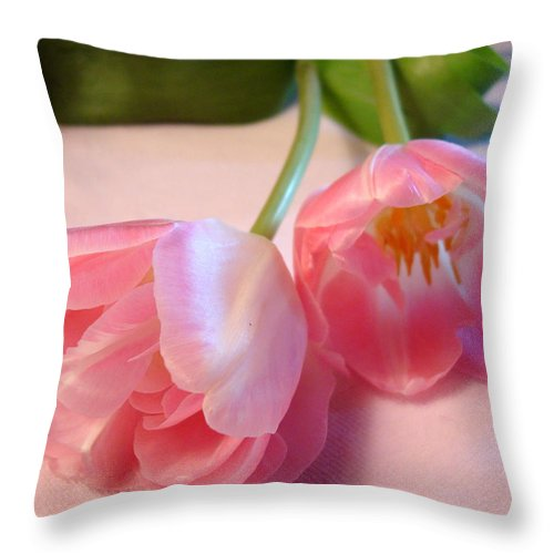 Kathy Bucari Throw Pillow featuring the photograph Grace by Kathy Bucari