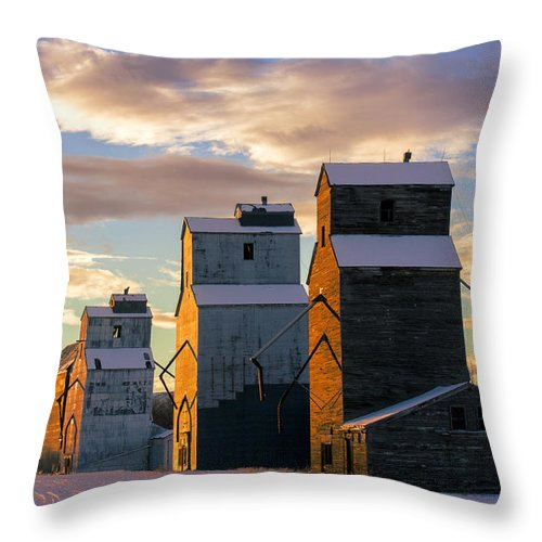 Grain Elevator Throw Pillow featuring the photograph Granary Row by Todd Klassy