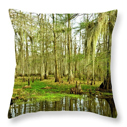 Swamp Throw Pillow featuring the photograph Grand Bayou Swamp by Scott Pellegrin