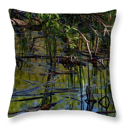 Grand Beach Marsh Manitoba Canada Throw Pillow featuring the photograph Grand Beach Marsh by Joanne Smoley