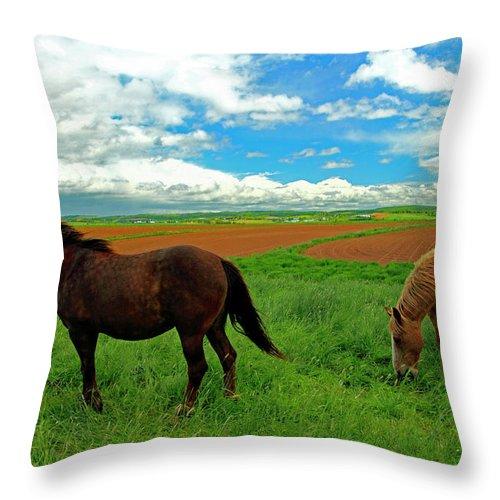 Canada Throw Pillow featuring the photograph Grand-pre Horses by Gary Corbett