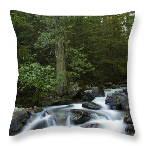 Granite Creek Throw Pillow featuring the photograph Granite Creek by Idaho Scenic Images Linda Lantzy