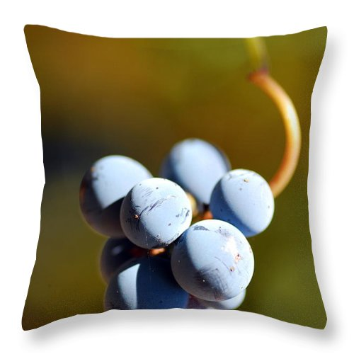 Macro Throw Pillow featuring the photograph Grape by Catherine Lau
