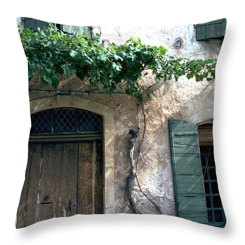 Grapevine Throw Pillow featuring the photograph Grapevine by Flavia Westerwelle