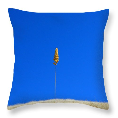 Landscape Throw Pillow featuring the photograph Grass And Sky by Catherine Lau
