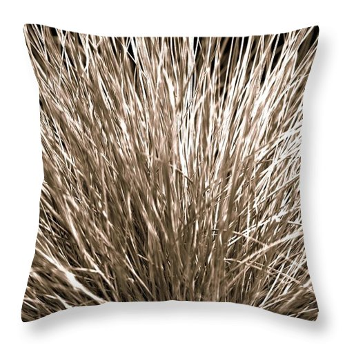 Nature Throw Pillow featuring the photograph Grass Explosion by H Kenny Oxenreider