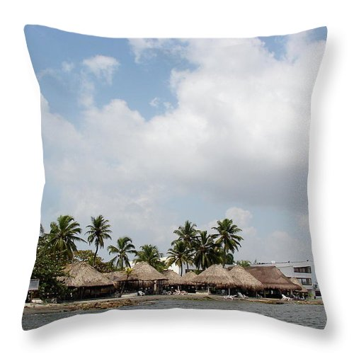 Grass Throw Pillow featuring the photograph Grass Huts Colombia II by Brett Winn