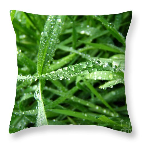 Artoffoxvox Throw Pillow featuring the photograph Grass Plus Water by Kristen Fox