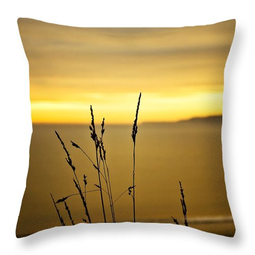 Art Throw Pillow featuring the photograph Grass by Svetlana Sewell