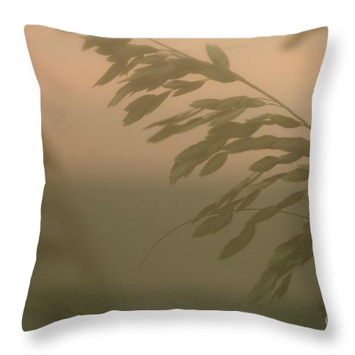 Green Throw Pillow featuring the photograph Grasses and Mist by Nadine Rippelmeyer